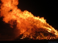 Bonfire Night #3