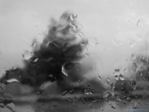 Raindrops: Travelling Windows